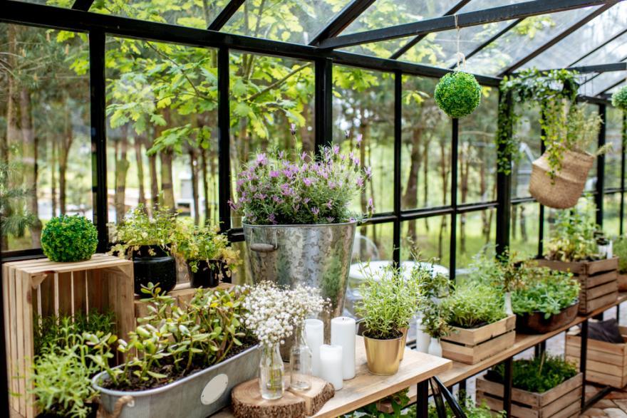 aménager un jardin d'hiver